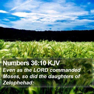 Numbers 36:10 KJV Bible Verse Image