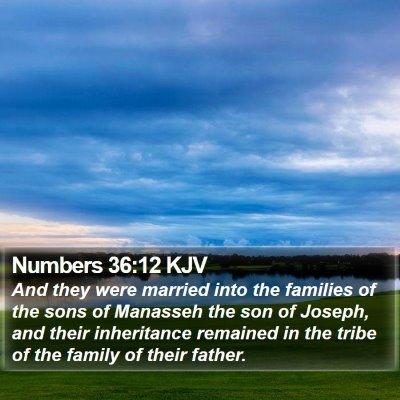Numbers 36:12 KJV Bible Verse Image