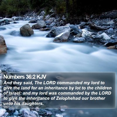 Numbers 36:2 KJV Bible Verse Image