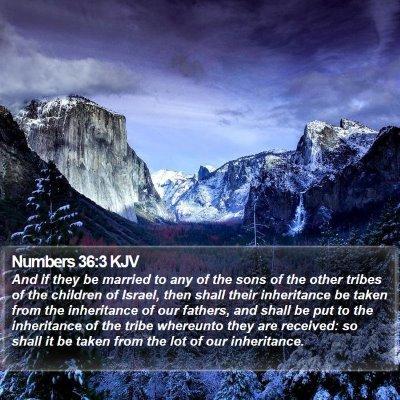 Numbers 36:3 KJV Bible Verse Image