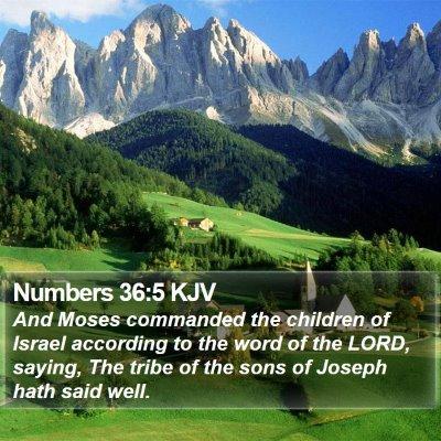 Numbers 36:5 KJV Bible Verse Image