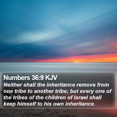 Numbers 36:9 KJV Bible Verse Image