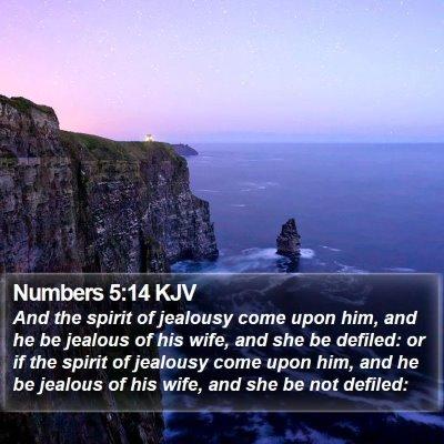 Numbers 5:14 KJV Bible Verse Image