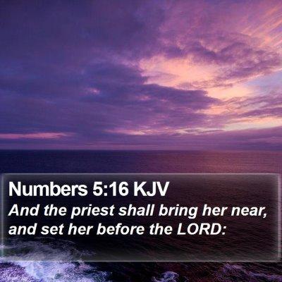 Numbers 5:16 KJV Bible Verse Image