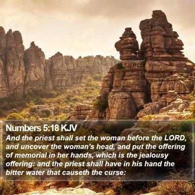 Numbers 5:18 KJV Bible Verse Image