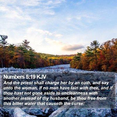Numbers 5:19 KJV Bible Verse Image