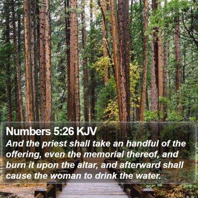 Numbers 5:26 KJV Bible Verse Image
