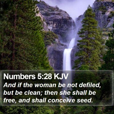 Numbers 5:28 KJV Bible Verse Image