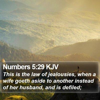 Numbers 5:29 KJV Bible Verse Image