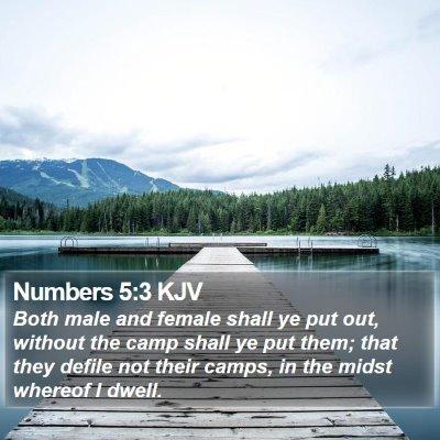 Numbers 5:3 KJV Bible Verse Image