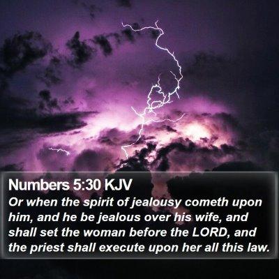 Numbers 5:30 KJV Bible Verse Image