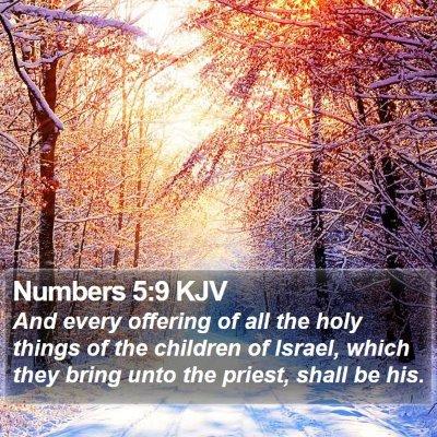 Numbers 5:9 KJV Bible Verse Image