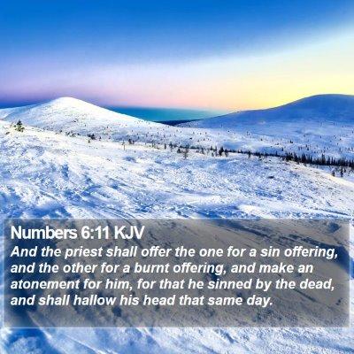 Numbers 6:11 KJV Bible Verse Image