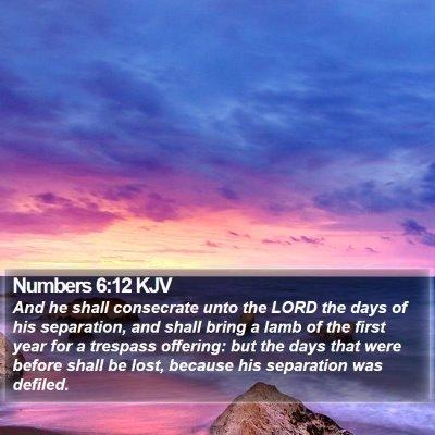 Numbers 6:12 KJV Bible Verse Image