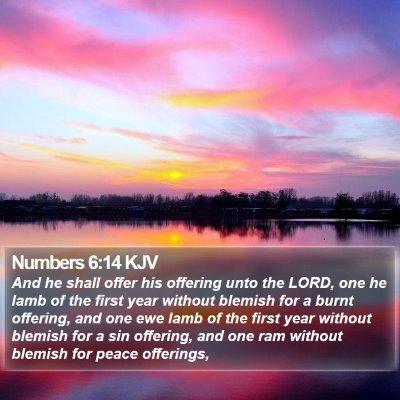 Numbers 6:14 KJV Bible Verse Image