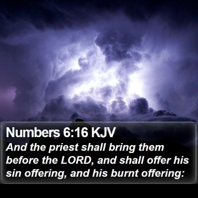 Numbers 6:16 KJV Bible Verse Image