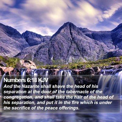 Numbers 6:18 KJV Bible Verse Image