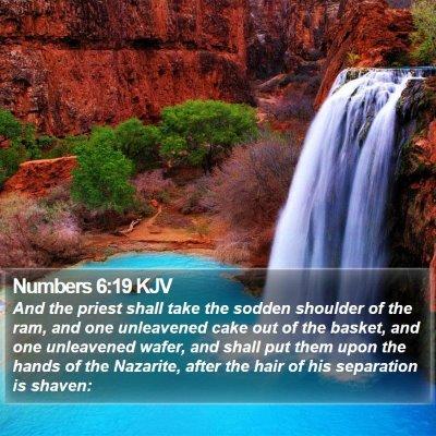 Numbers 6:19 KJV Bible Verse Image