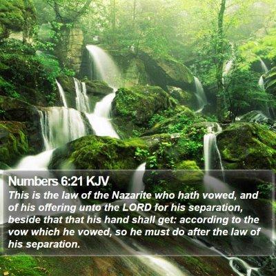 Numbers 6:21 KJV Bible Verse Image