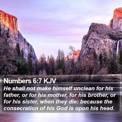 Numbers 6:7 KJV Bible Verse Image