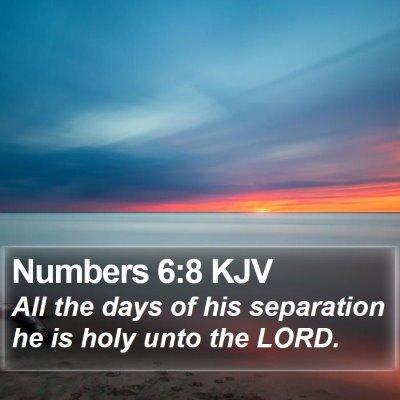 Numbers 6:8 KJV Bible Verse Image