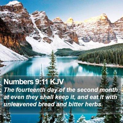 Numbers 9:11 KJV Bible Verse Image