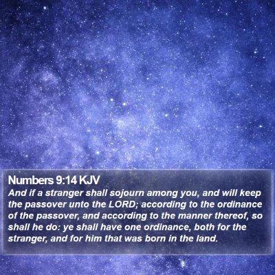 Numbers 9:14 KJV Bible Verse Image