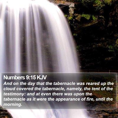 Numbers 9:15 KJV Bible Verse Image