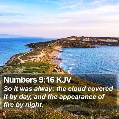 Numbers 9:16 KJV Bible Verse Image