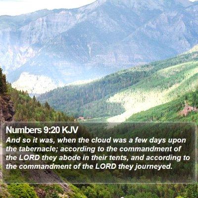 Numbers 9:20 KJV Bible Verse Image