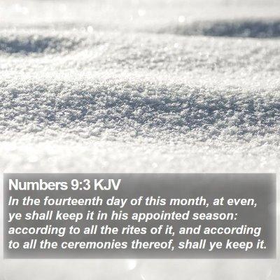 Numbers 9:3 KJV Bible Verse Image