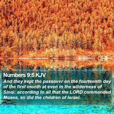 Numbers 9:5 KJV Bible Verse Image