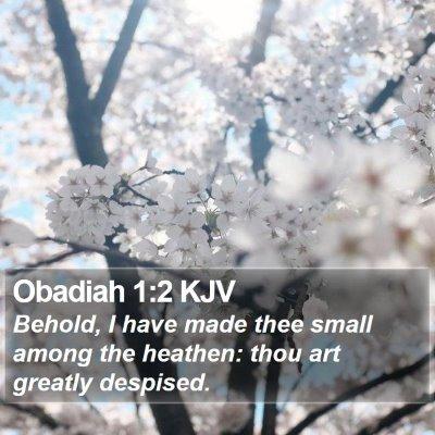 Obadiah 1:2 KJV Bible Verse Image
