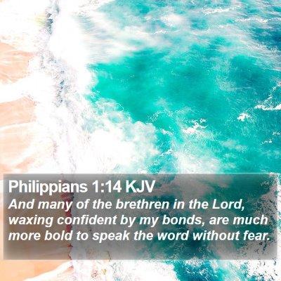 Philippians 1:14 KJV Bible Verse Image