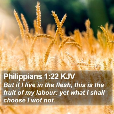 Philippians 1:22 KJV Bible Verse Image