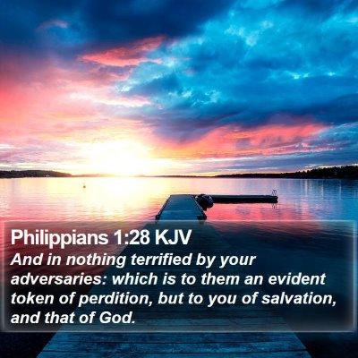 Philippians 1:28 KJV Bible Verse Image