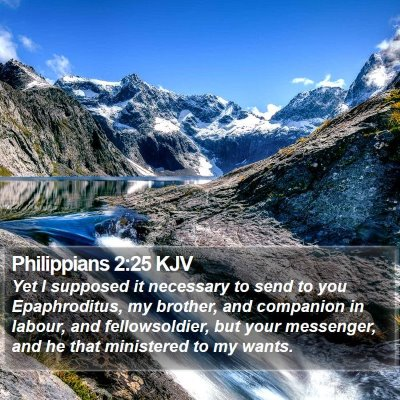 Philippians 2:25 KJV Bible Verse Image
