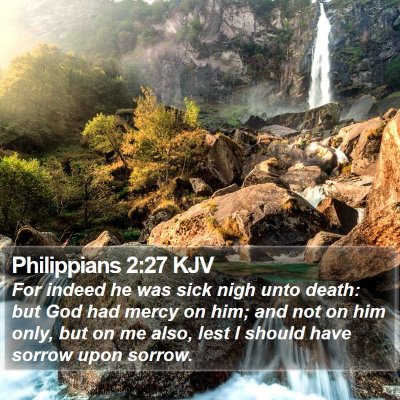 Philippians 2:27 KJV Bible Verse Image