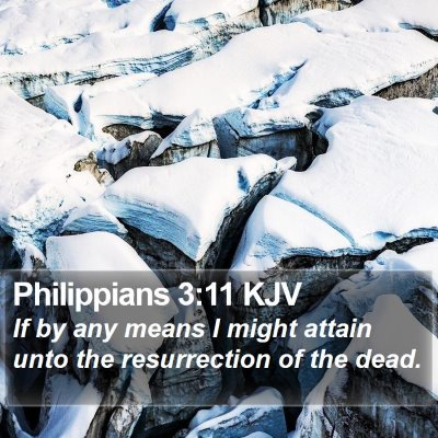 Philippians 3:11 KJV Bible Verse Image