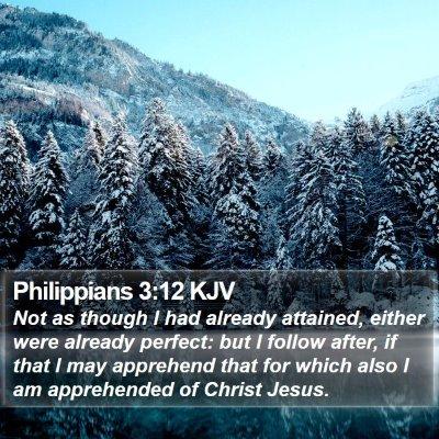 Philippians 3:12 KJV Bible Verse Image