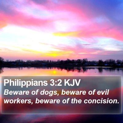 Philippians 3:2 KJV Bible Verse Image