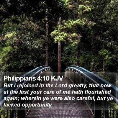 Philippians 4:10 KJV Bible Verse Image