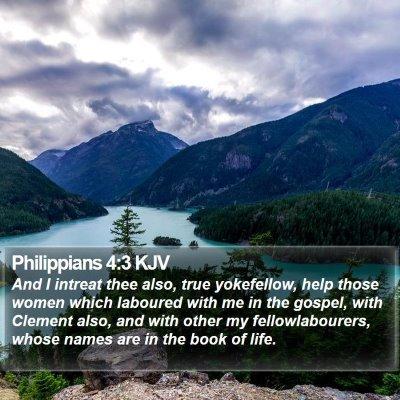 Philippians 4:3 KJV Bible Verse Image
