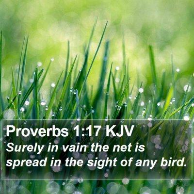Proverbs 1:17 KJV Bible Verse Image