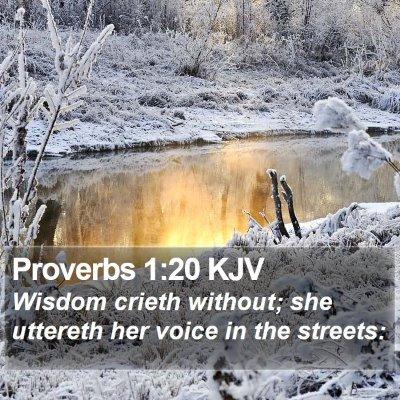 Proverbs 1:20 KJV Bible Verse Image