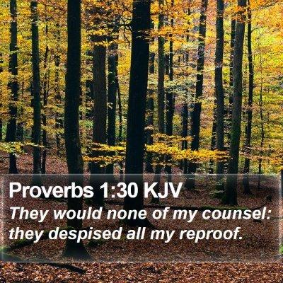 Proverbs 1:30 KJV Bible Verse Image