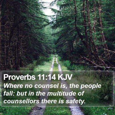 Proverbs 11:14 KJV Bible Verse Image