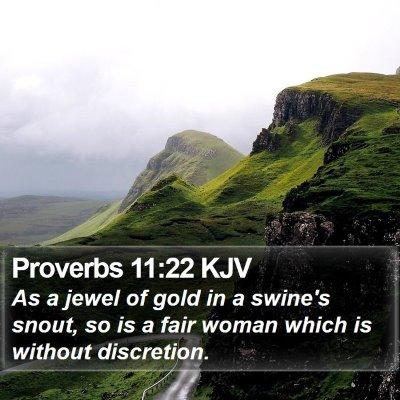 Proverbs 11:22 KJV Bible Verse Image