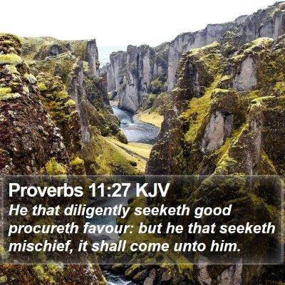 Proverbs 11:27 KJV Bible Verse Image