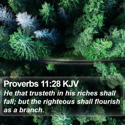 Proverbs 11:28 KJV Bible Verse Image